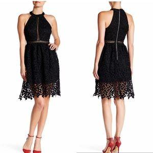 Bold Lace Halter Dress (NWOT)